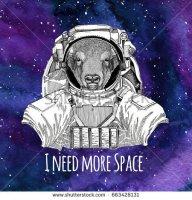 Buffalo Spaceman